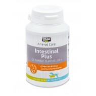 Intestinal Plus